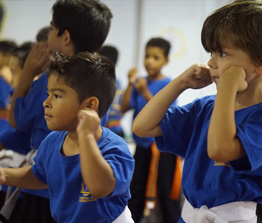 Kids Martial Arts Karate Classes: Queens Brooklyn Long Island Astoria - kid2