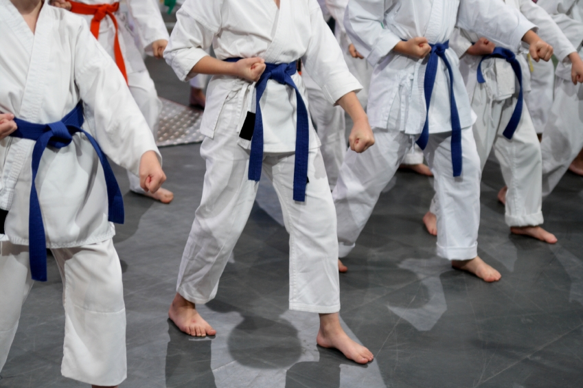838ebfbbd Understanding the Meaning of Karate Belt Colors - Blog - New York ...