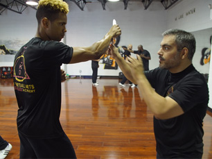 One-On-One Martial Arts Training - Astoria, Brooklyn, Long Island, Queens NYC - one1